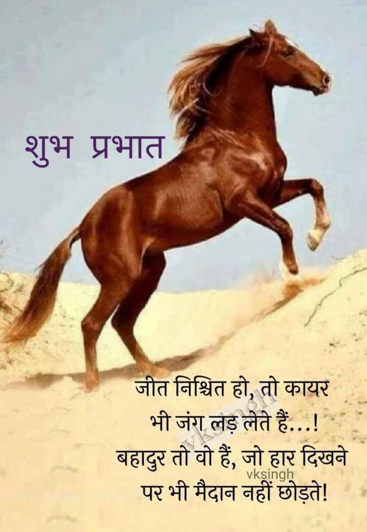 🙏 प्रेरणादायक विचार - शुभ प्रभात जीत निश्चित हो , तो कायर भी जंग लड़ लेते हैं . . . ! बहादुर तो वो हैं , जो हार दिखने पर भी मैदान नहीं छोड़ते ! KSI - ShareChat