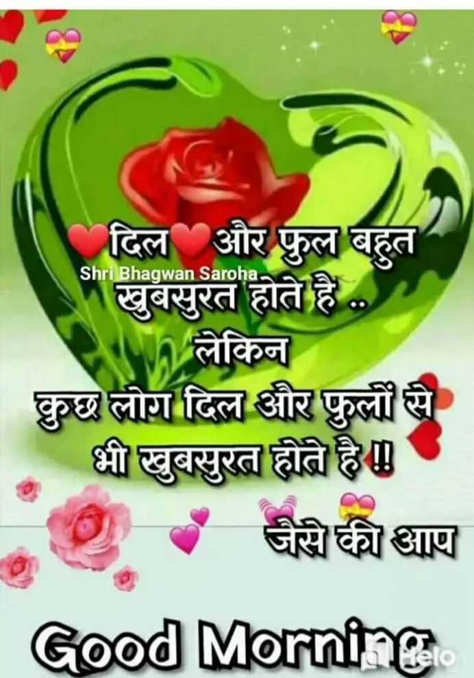 🙏 प्रेरणादायक विचार - Shri Bhagwan Saroha दिल और फुल बहुत खुबसुरत होते है . . . Wh लेकिन कुछ लोग दिल और फुलों से भी खुबसुरत होते है । - जैसे की आप Good Morning - ShareChat