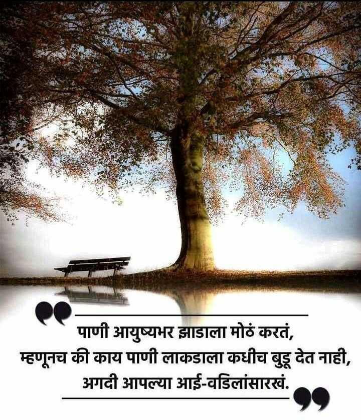 🙏प्रेरणादायक / सुविचार - पाणी आयुष्यभर झाडाला मोठं करतं , म्हणूनच की काय पाणी लाकडाला कधीच बुडू देत नाही , अगदी आपल्या आई - वडिलांसारखं . - ShareChat
