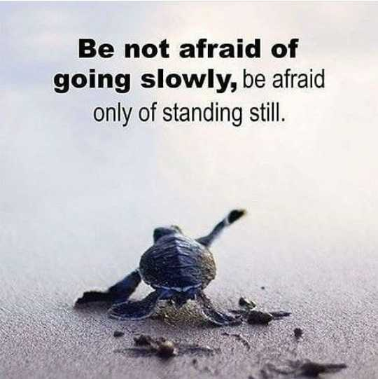 🙏प्रेरणादायक / सुविचार - Be not afraid of going slowly , be afraid only of standing still . - ShareChat