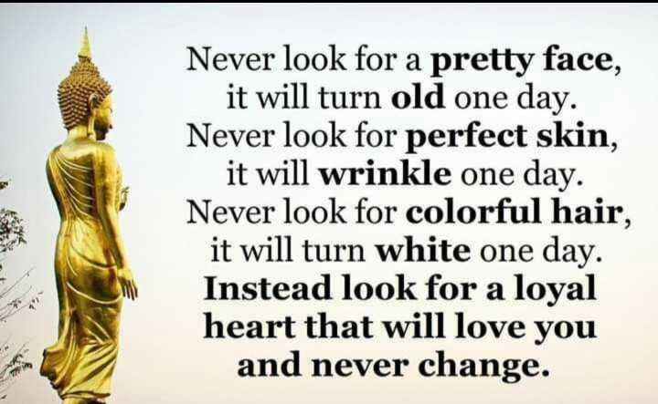 🙏प्रेरणादायक / सुविचार - Never look for a pretty face , it will turn old one day . Never look for perfect skin , it will wrinkle one day . Never look for colorful hair , it will turn white one day . Instead look for a loyal heart that will love you and never change . - ShareChat