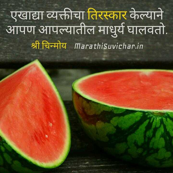 🙏प्रेरणादायक - | एखाद्या व्यक्तीचा तिरस्कार केल्याने आपण आपल्यातील माधुर्य घालवतो . SACHLI MarathiSuvichar . in - ShareChat