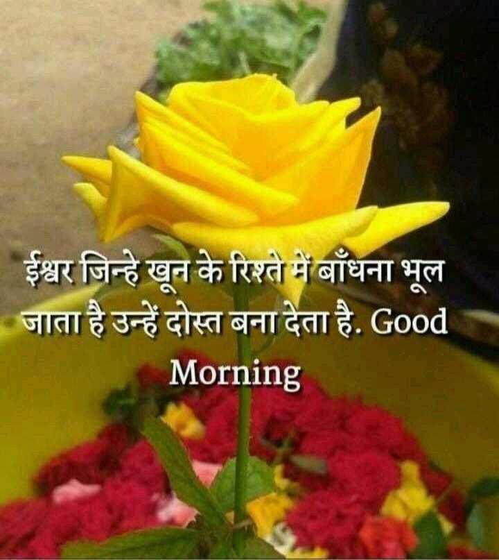 📝प्रेरणादायक - | ईश्वर जिन्हे खून के रिश्ते में बाँधना भूल | जाता है उन्हें दोस्त बना देता है . Good Morning - ShareChat