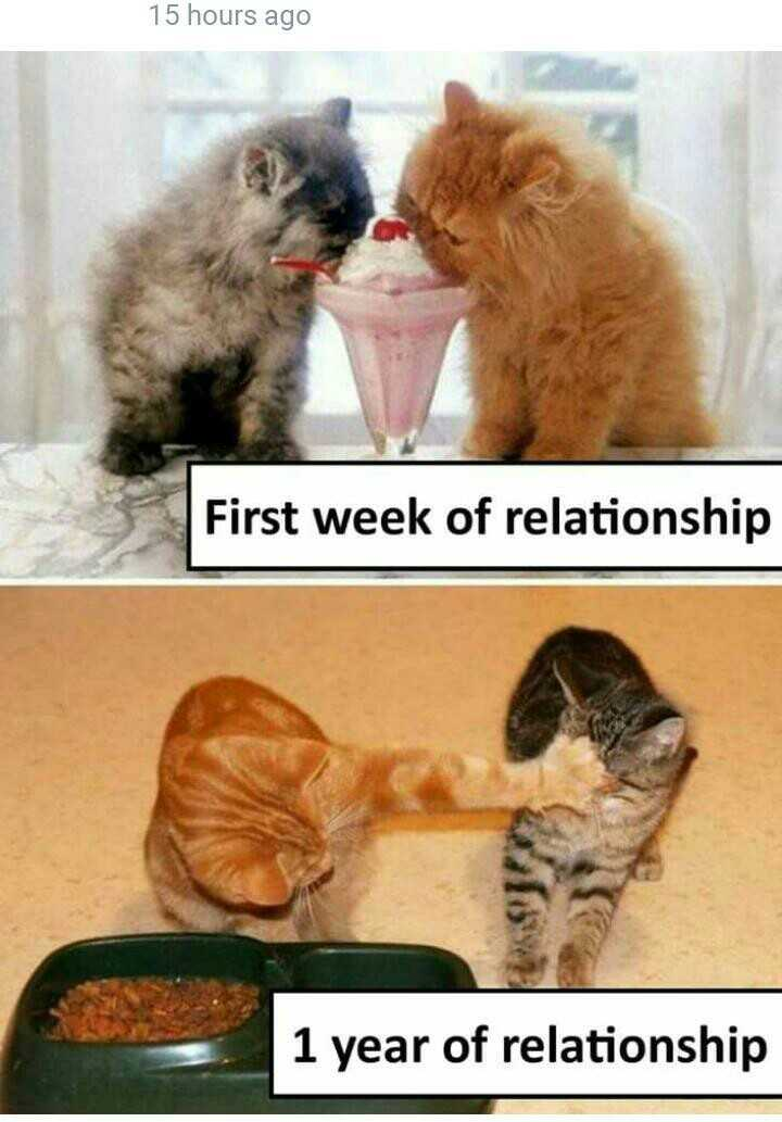 😹फनी जोक्स - 15 hours ago First week of relationship 1 year of relationship - ShareChat