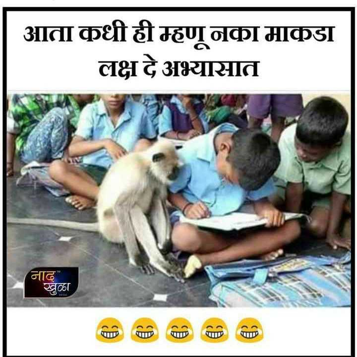🤣फनी व्हिडीओ - आता कधीही म्हणू नका माकडा लक्ष दे अभ्यासात नाद खुळा - ShareChat