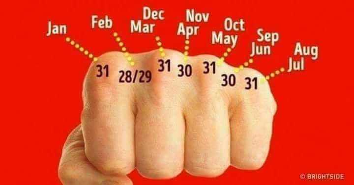 फैक्टस एव जानकारी - Apr Jan Feb Mlec Nov Oc May Sep 31 28 / 29 31 30 31 32 Jun Aug BRIGHTSIDE - ShareChat