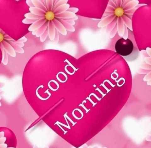 फोटू आले स्टेटस - Good Morning - ShareChat