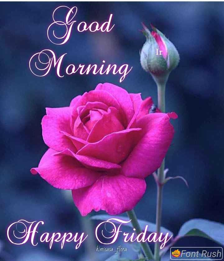 💐 फ्लावर फोटोग्राफी - Good Morning Happy Friday kimisasa _ flora Font Rush - ShareChat