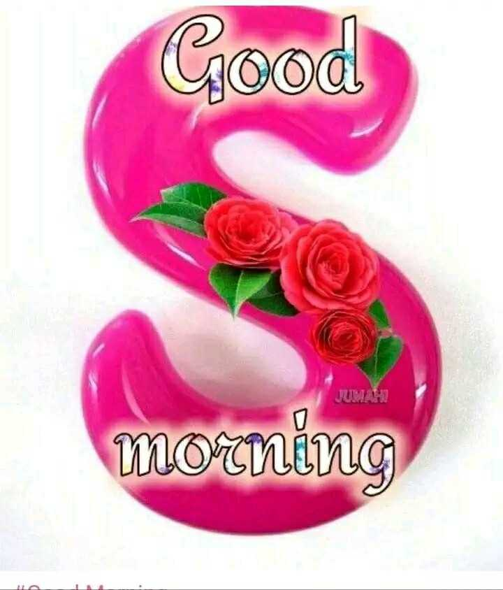 🌸 फ्लावर फोटो 🌸 - Good JUMAH morning - ShareChat