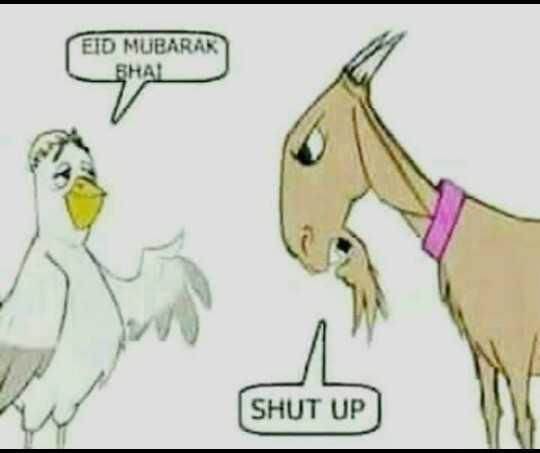 😃😃बकरा ईद जोक्स 😃😃 - EID MUBARAK _ FHAL SHUT UP ) - ShareChat