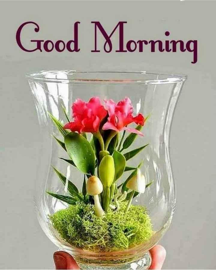 💐बधाई और शुभकामनाएं - Good Morning - ShareChat