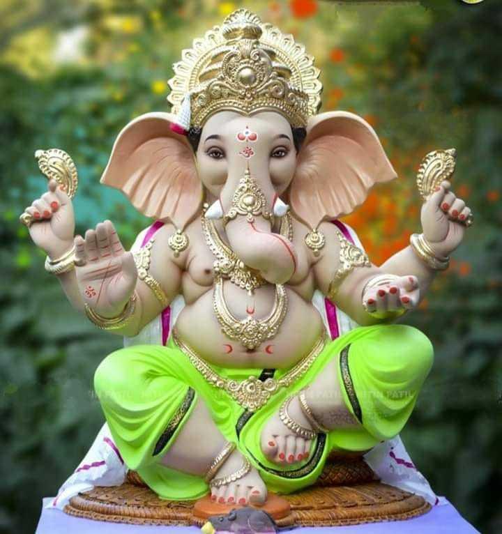 बाप्पा माझा - ShareChat