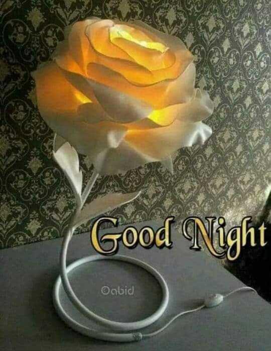 👦 बाल नरेंद्र - Good Night Onlid - ShareChat