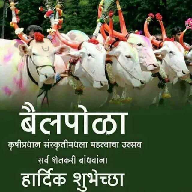 🙏बैल पोळा - बैलपोळा कृषीप्रधान संस्कृतीमधला महत्वाचा उत्सव सर्व शेतकरी बांधवांना हार्दिक शुभेच्छा - ShareChat