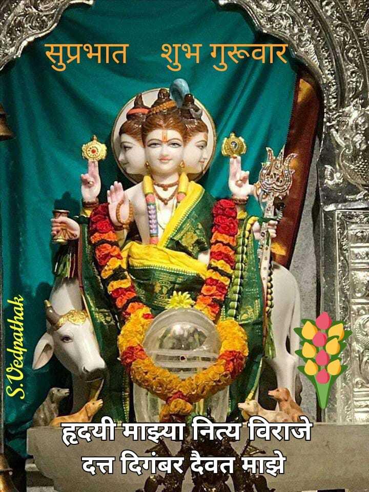 🙏भक्ती स्टेट्स - सुप्रभात शुभ गुरूवार S . Vedpathak हृदयी माझ्या नित्य विराजे दत्त दिगंबर दैवत माझे - ShareChat