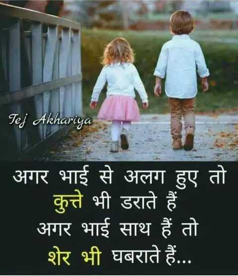 👫 भाई बहन - Tej Akhariya अगर भाई से अलग हुए तो कुत्ते भी डराते हैं अगर भाई साथ हैं तो शेर भी घबराते हैं . . . - ShareChat