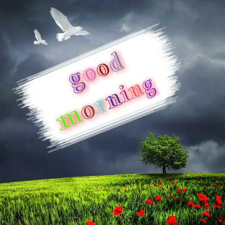 🔐 भारत बंद 🛑 - good morning - ShareChat