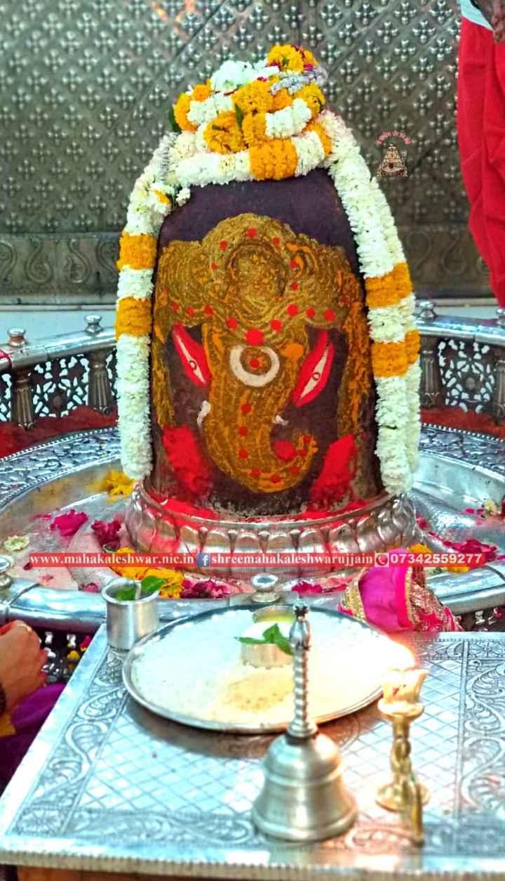 🌺 मंदिर के दर्शन - www . mahakaleshwar . nic . in fshreemahakaleshwarujjain 07342559277 - ShareChat