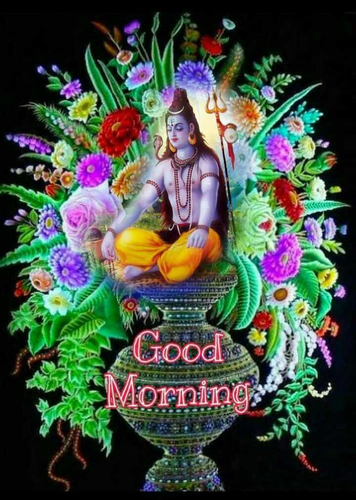 🌺 मंदिर के दर्शन - 6 Good . Morning - ShareChat