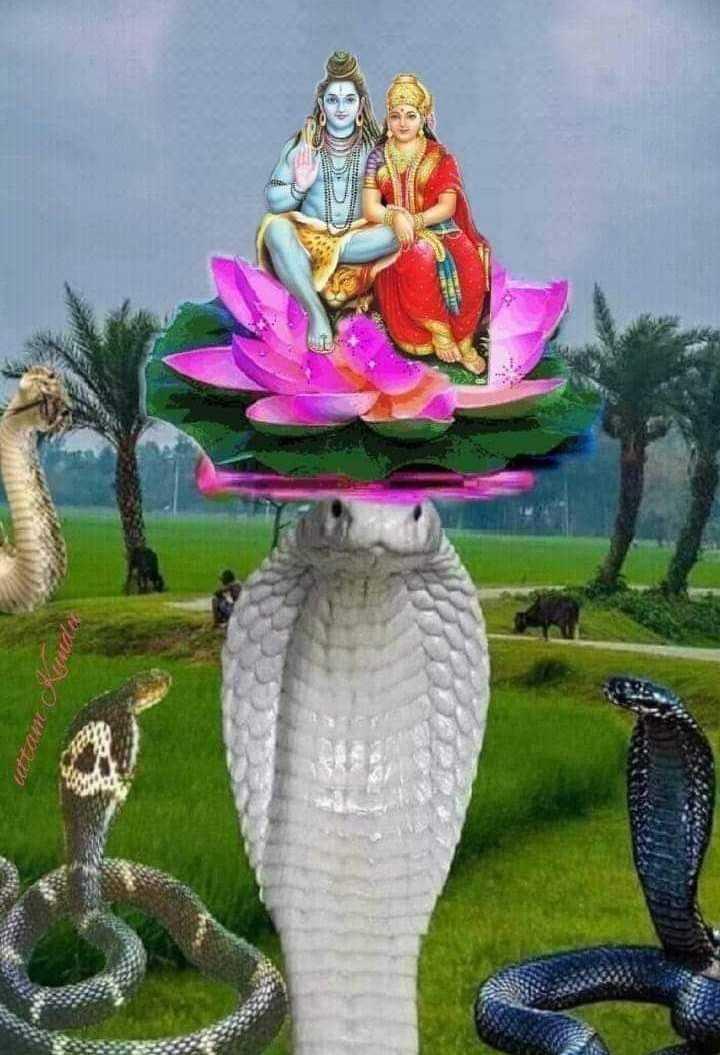 🌺 मंदिर के दर्शन - uttam Kudio - ShareChat