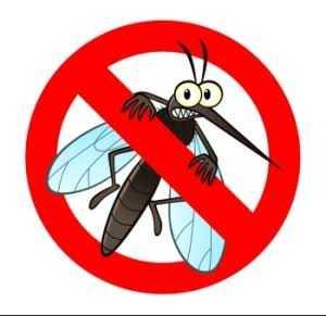🦟 मच्छरों भारत छोड़ो - ShareChat