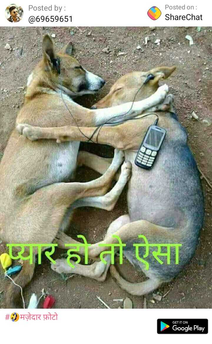 🤣मज़ेदार फ़ोटो - Posted by : @ 69659651 Posted on : ShareChat प्यार को ऐसा | # 92 मज़ेदार फ़ोटो GET IT ON N ow , Google Play - ShareChat