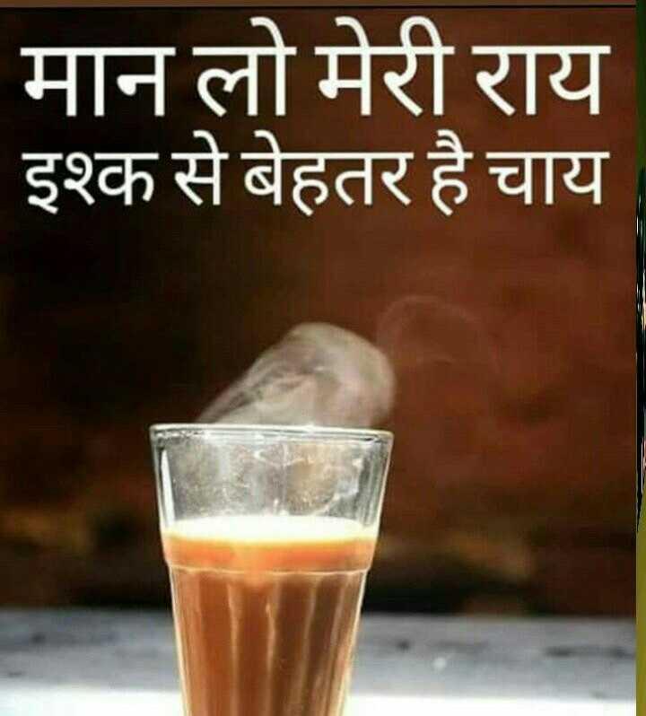 🤣मज़ेदार फ़ोटो - मान लो मेरी राय इश्क से बेहतर है चाय - ShareChat