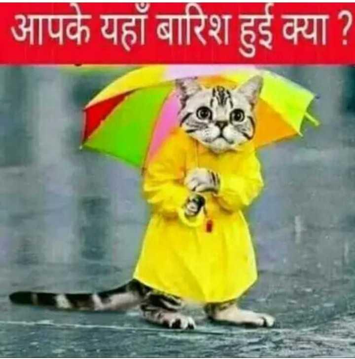 🤣मज़ेदार फ़ोटो - आपके यहाँ बारिश हुई क्या ? - ShareChat