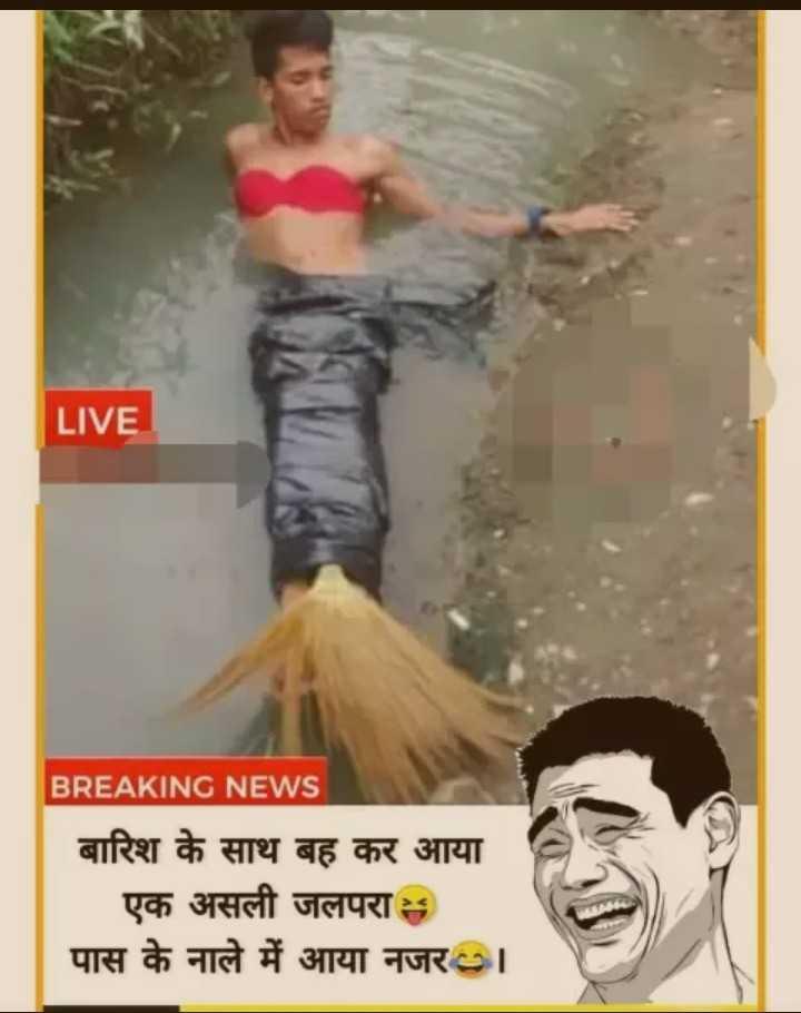 🤣मज़ेदार फ़ोटो - LIVE BREAKING NEWS बारिश के साथ बह कर आया   एक असली जलपरा पास के नाले में आया नजर । । - ShareChat