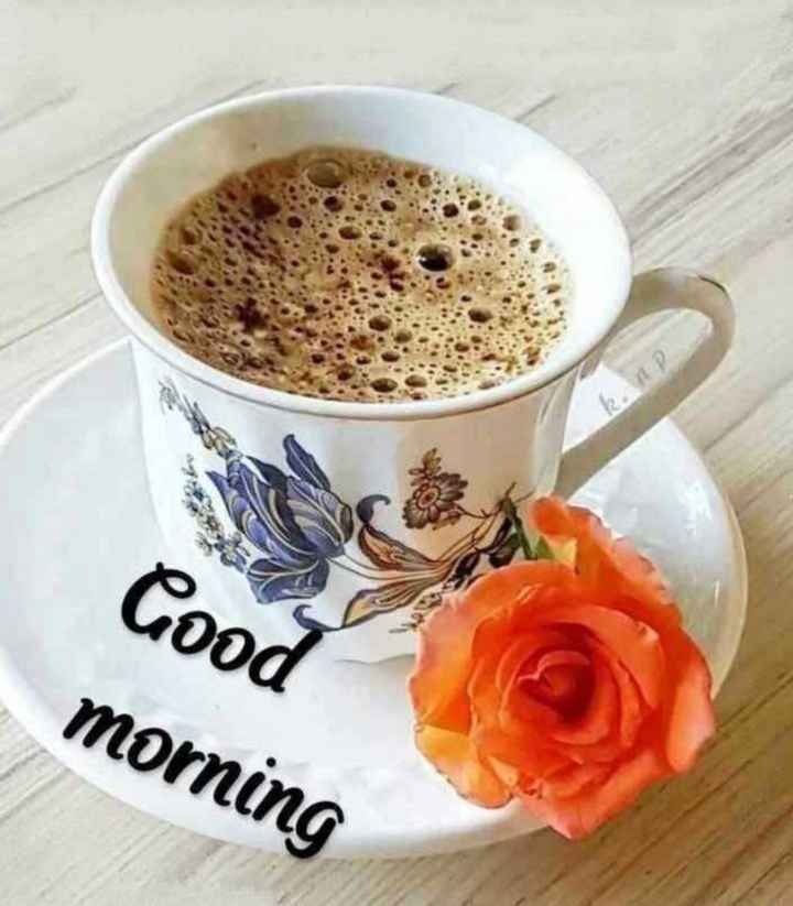 📹मजेदार वीडियो📹 - k . ap Good morning - ShareChat