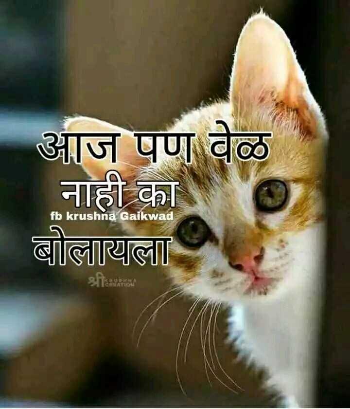 मनि माऊ - आज पण वेळ   नाही का बोलायला fb krushna Gaikwad - ShareChat