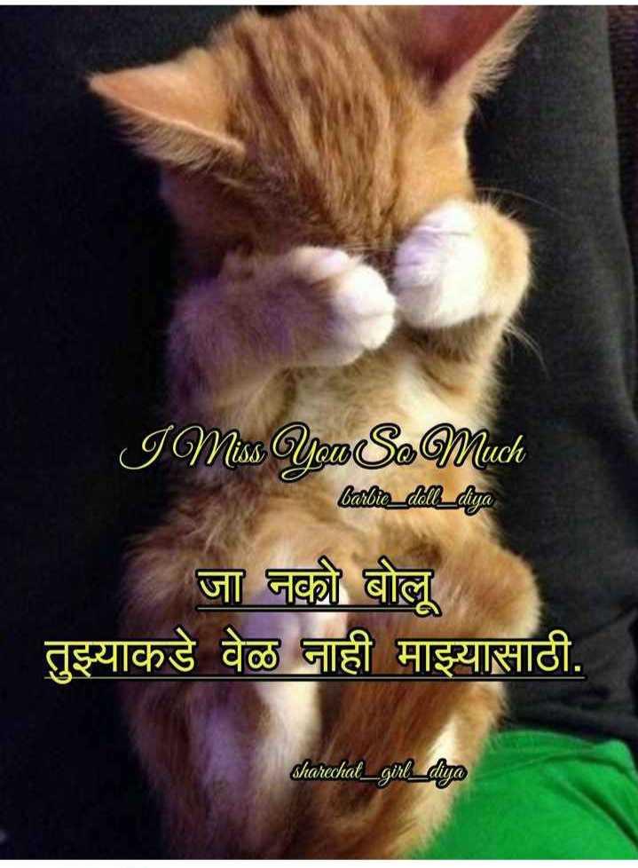 🐈मनी म्याऊ/प्राणी प्रेम - I Miss Y @ S . Much Gatha _ de _ deo जा न बोलू तुझ्याकडे वेळ नाही माझ्यासाठी . Sharechal _ girl _ diya - ShareChat