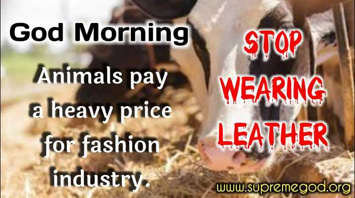 🙏 महादेव का आगमन - God Morning Animals pay a heavy price for fashion 1 LEATHER findustry . www . supremegod . org - ShareChat
