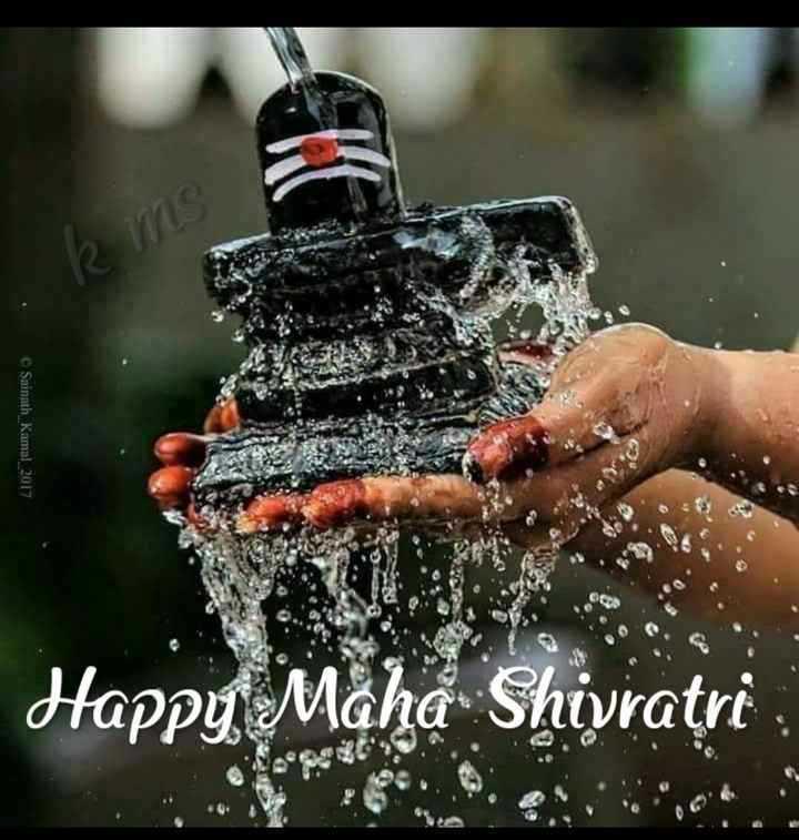 🌺महाशिवरात्रि शुभकामनाएं - Saunath Kamal 2017 . Happy Maha Shivratri - ShareChat