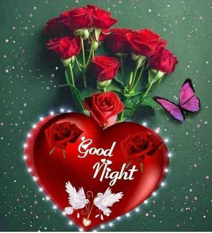 🤳माय सेल्फी - Good Night - ShareChat