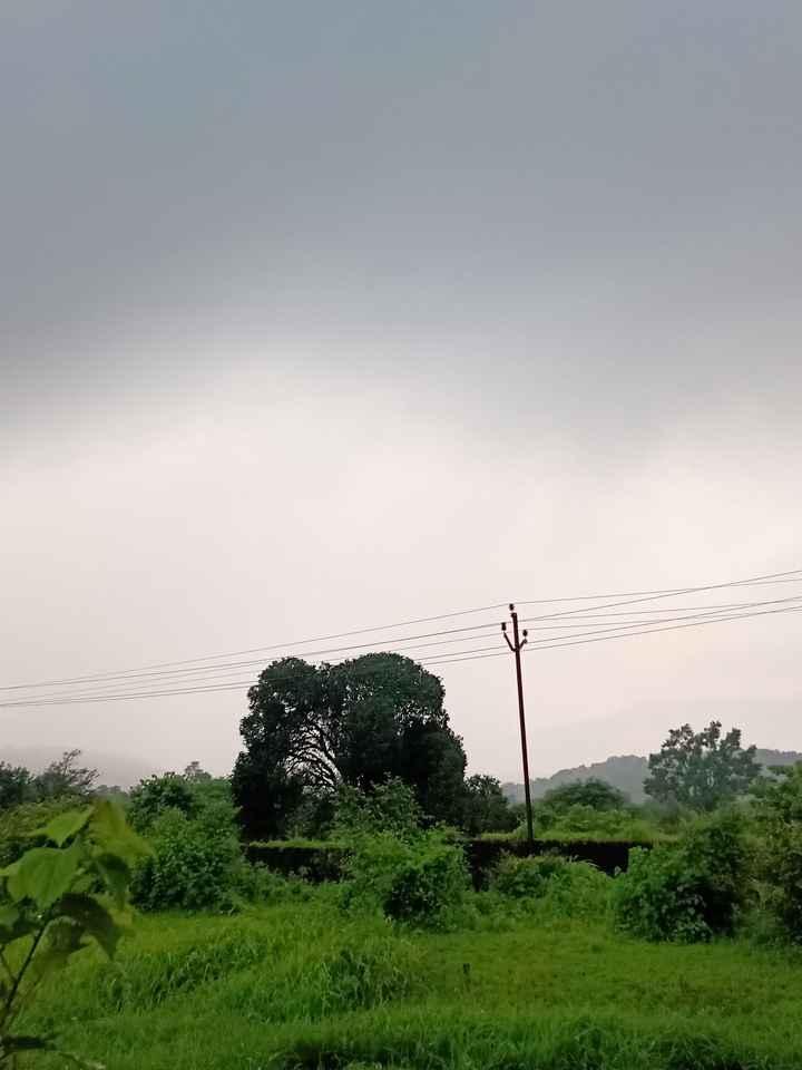 ⛈मुंबईत पाऊस - ShareChat