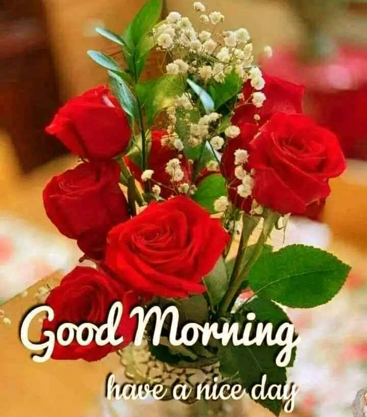 👨 मेरा गांव - Good Morning have a nice day - ShareChat