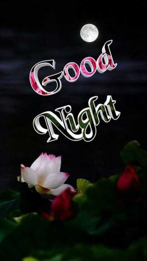🌃 मेरा रात का वीडियो - Good Night - ShareChat