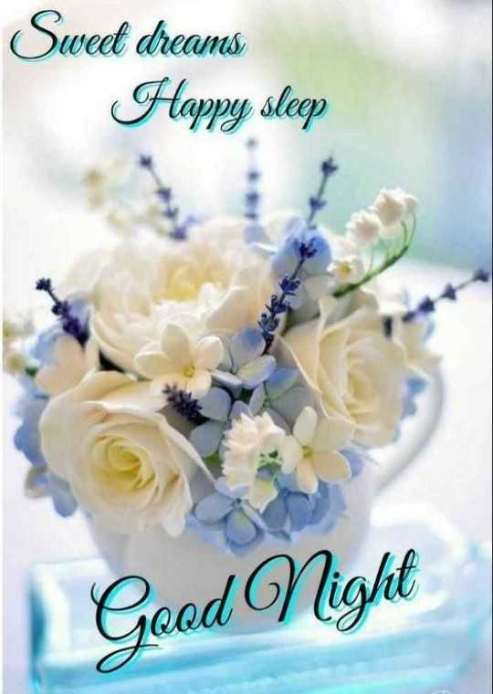 🌃 मेरा रात का वीडियो - Sweet dreams Happy sleep Good Night - ShareChat