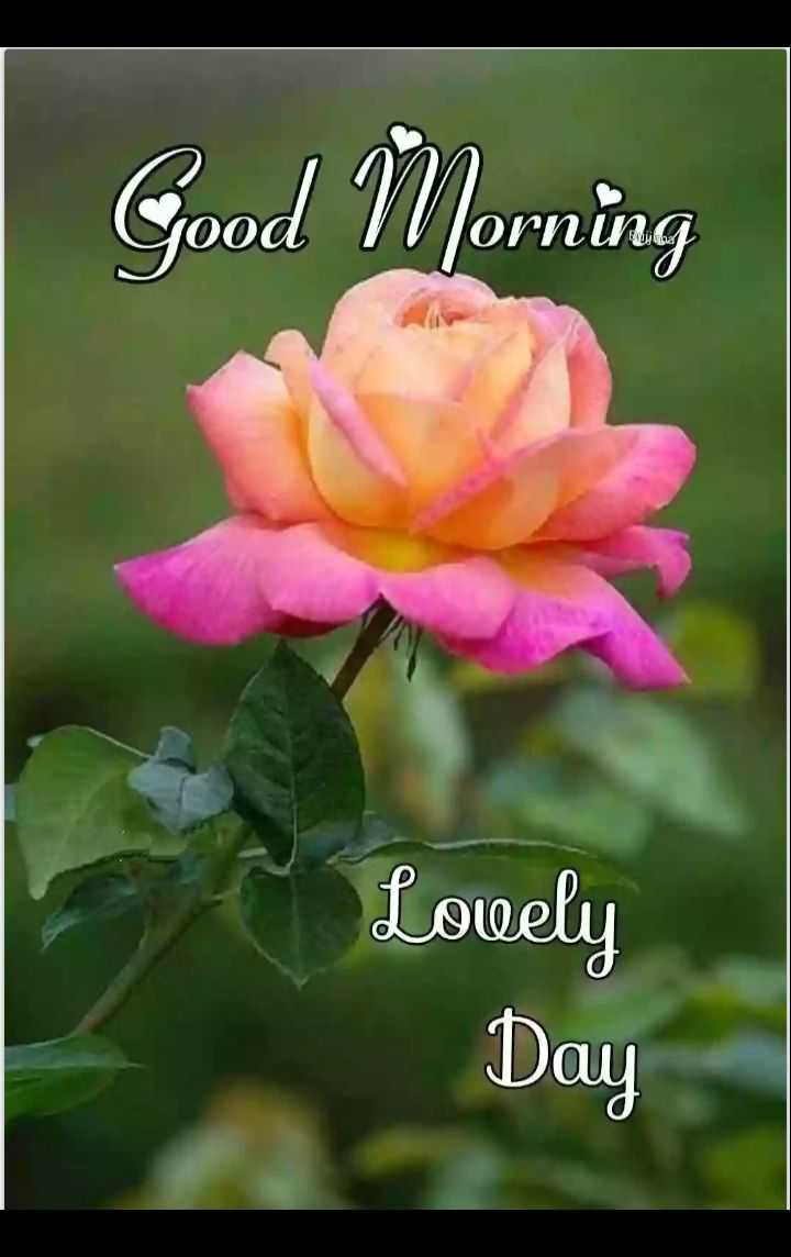 🌄 मेरी आज की सुबह - Good Morning Lovely Day - ShareChat