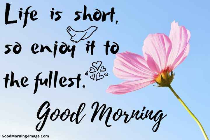 🌄 मेरी आज की सुबह - Life is short , so enjoy it to the fullest . Good Morning Good Morning - Image . com - ShareChat