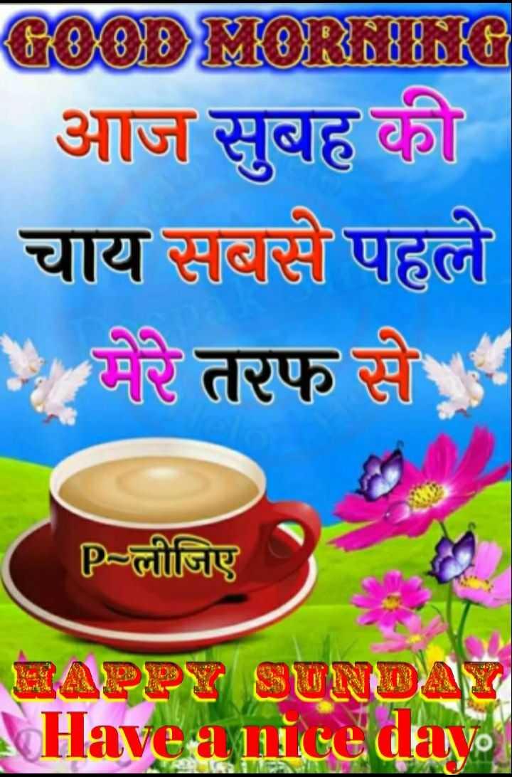 🌄 मेरी आज की सुबह - GOOD MORMING आज सुबह की चाय सबसे पहले * मेरे तरफ से P - लीजिए RAPHRSONOT Have a nice day - ShareChat