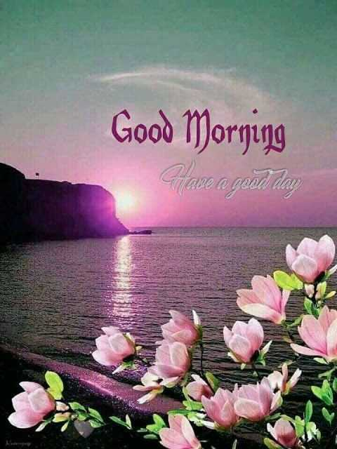 🌄 मेरी आज की सुबह - Good Morning good day - ShareChat