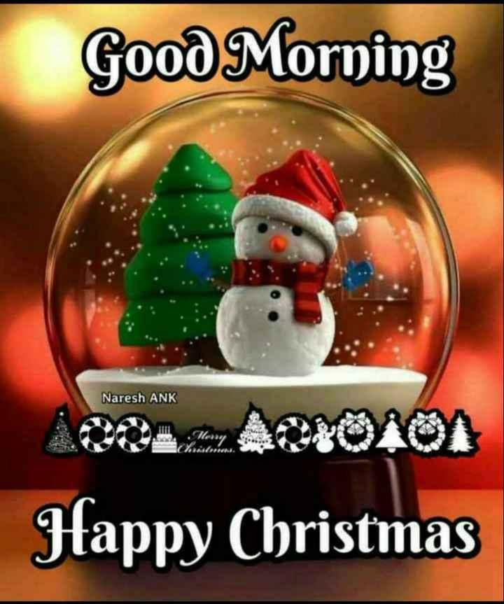 🎅मेरी ख्रिसमस 🎄 - Good Morning Naresh ANK Clery Happy Christmas - ShareChat