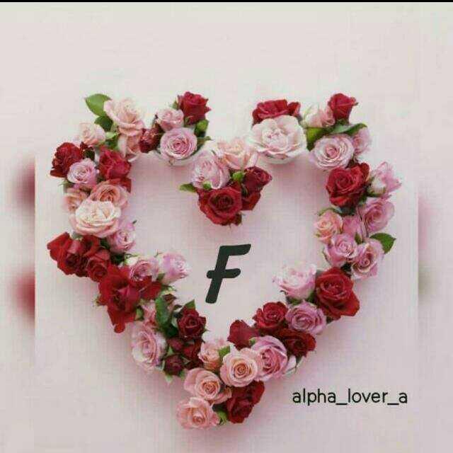 📒 मेरी डायरी - alpha _ lover _ a - ShareChat