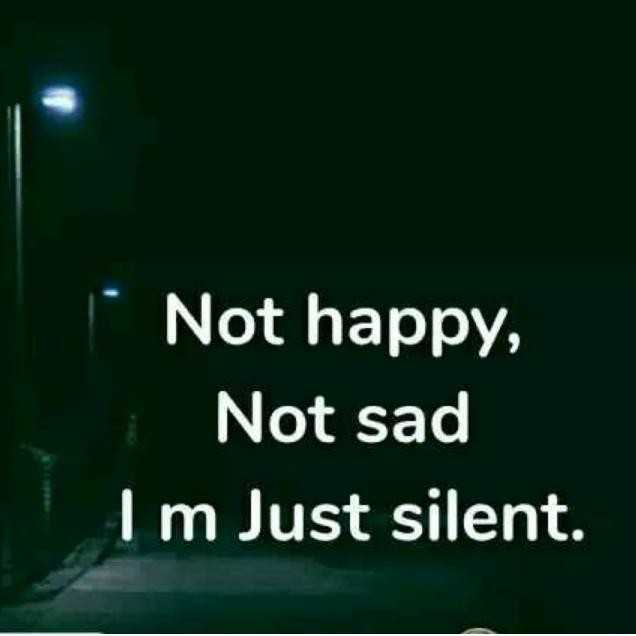 📒 मेरी डायरी - Not happy , Not sad I m Just silent . - ShareChat