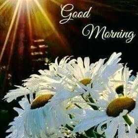 🤳मेरी सेल्फ़ी - Good Morning - ShareChat