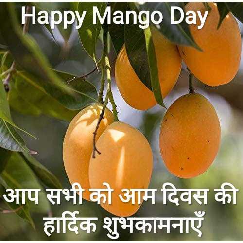 🥭 मैंगो डे - Happy Mango Day आप सभी को आम दिवस की हार्दिक शुभकामनाएँ । - ShareChat
