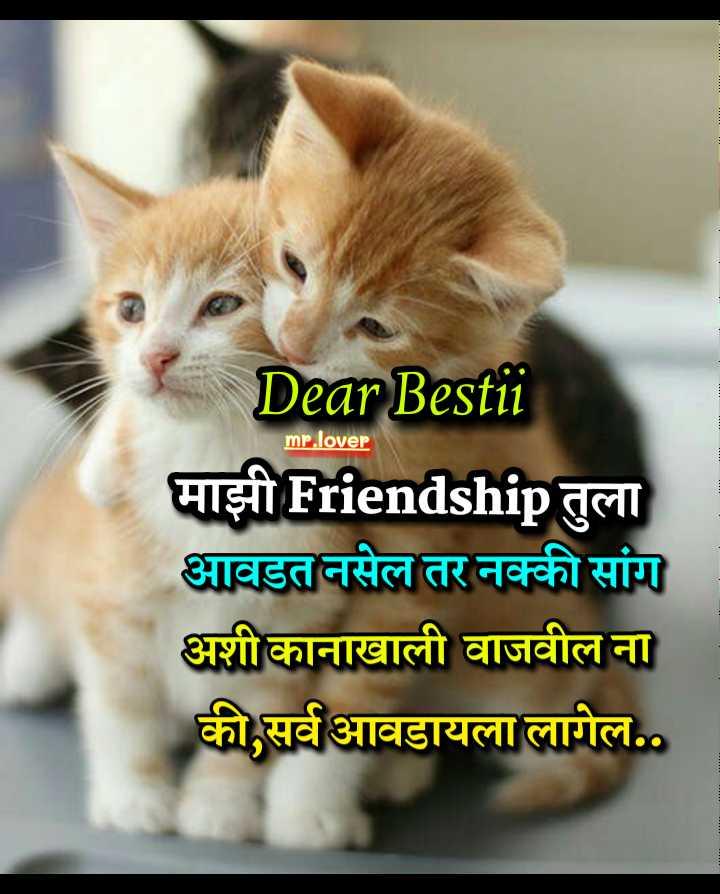 🤘मैत्री - mr . lover Dear Bestii माझी Friendship तुला आवडत नसेल तर नक्की सांग अशी कानाखाली वाजवील ना की सर्व आवडायला लागेल . . - ShareChat