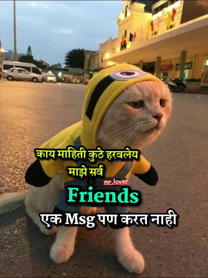 🤘मैत्री - काय माहिती कुठे हरवलेय माझे सर्व mr . lover Friends एक Msg पण करत नाही - ShareChat